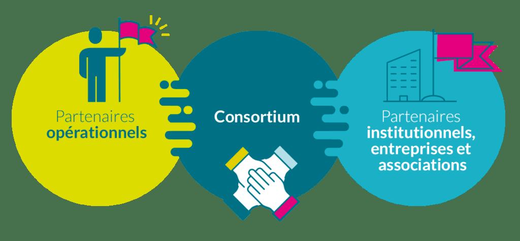 MIVE - SAE - Différents types de partenaires
